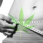Cannabis Can Lower Obesity Rates According to Studies
