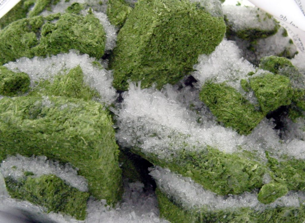 ice cooled marijuana