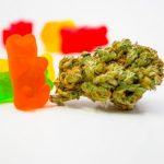 How to Make Your Own Cannabis Gummies at Home