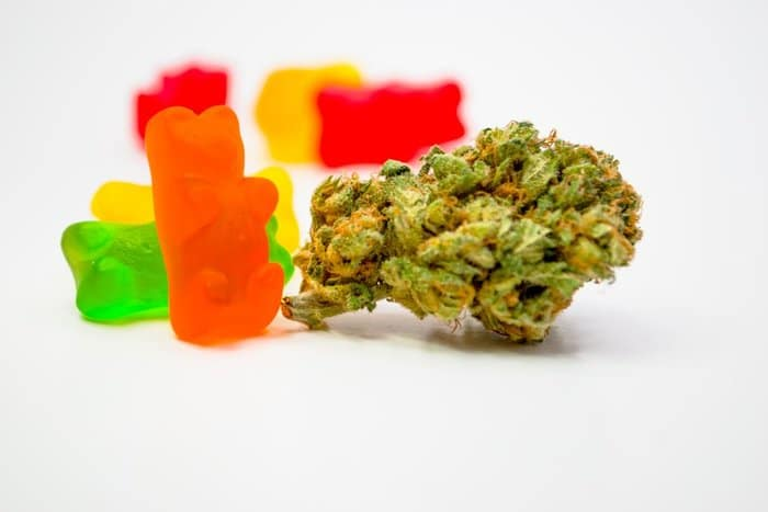 How to Make Your Own Cannabis Gummies at Home | Leaf and Lion