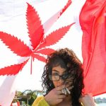 Why Are All Eyes on Canada's Pot Legalization