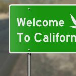 Top 3 Cannabis Trends in California