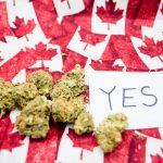 What American Tourists Should Know About the Legalization of Marijuana in Canada